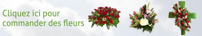 banniere-commander-fleurs